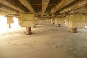 OCNJ under the boardwalk